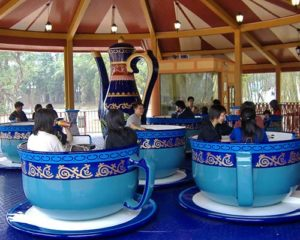 amusement park tea cup ride for sale